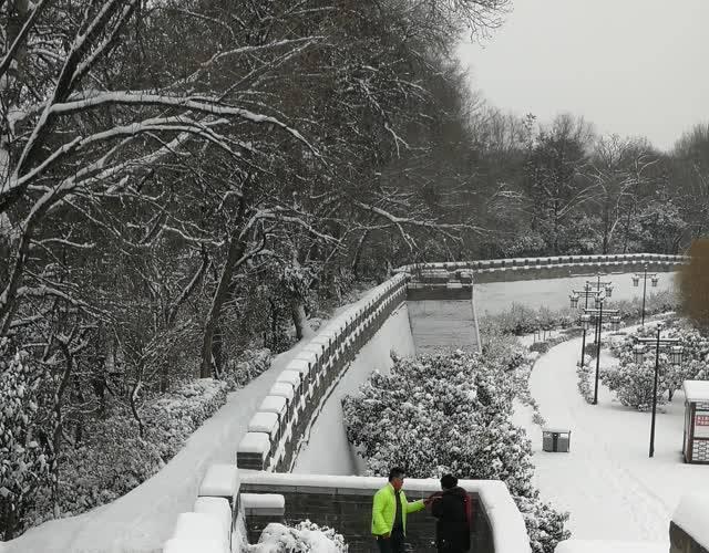 在雪地里滚起来 商洛2018年第一场雪