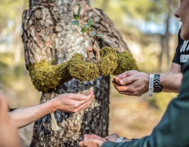 """这组名为《人性》的艺术作品来自法国的艺术家。艺术家们为树木添加上了""""手""""和""""脚""""。表达一种天人合一,自然与进化的概念。"""