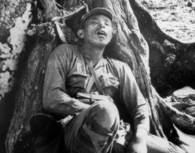 血战塞班岛之后在树林中被杀死的一名日本兵。