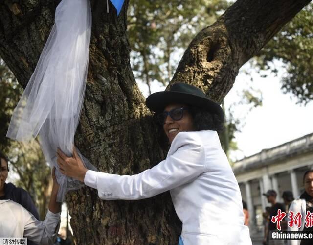 當地時間2017年2月25日,瓜地馬拉首都瓜地馬拉市,祕魯男演員理查德·託雷斯(Richard Torres)與樹結婚,呼籲保護自然。據瞭解,託雷斯此前曾在波哥大國家公園和阿根廷首都布宜諾斯艾利斯與兩棵樹結婚。