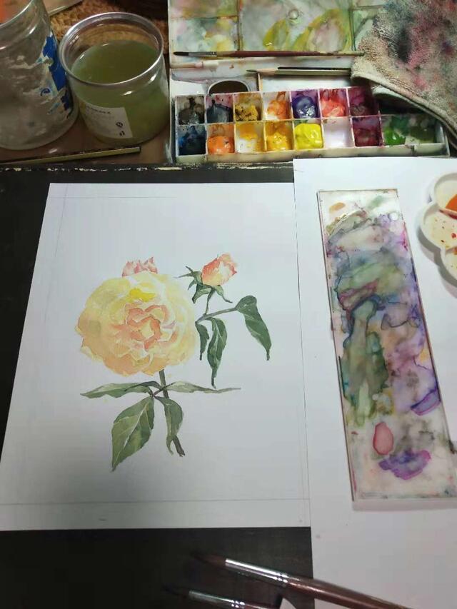 水彩画|《黄玫瑰》步骤详解