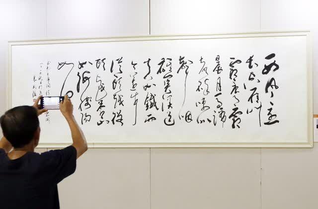 唐国强,刘晓庆,王刚等100多位名人书画同台亮相,观众图片