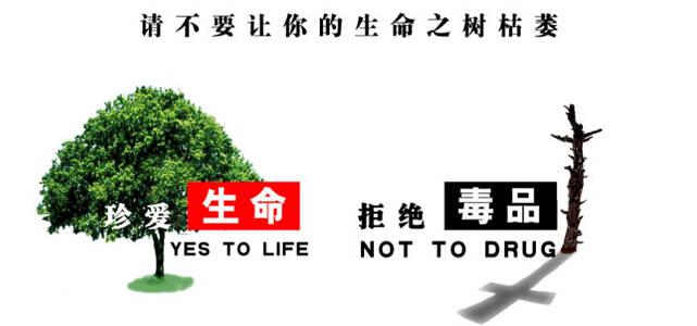 中国互联网禁毒公约发布 涉毒