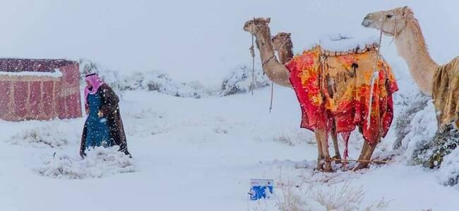 撒哈拉沙漠又降雪!沙漠小镇罕见下雪,气温骤降至-2℃