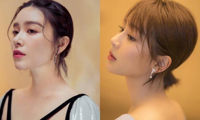 阚清子和杨紫同台比美