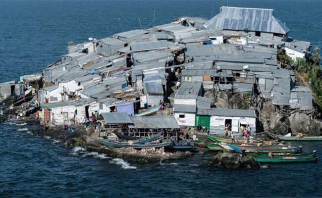 全球最拥挤小岛