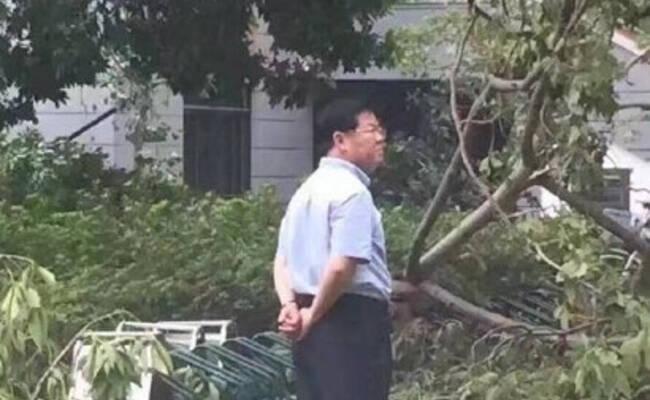 台风过后厦门大学校长的背影