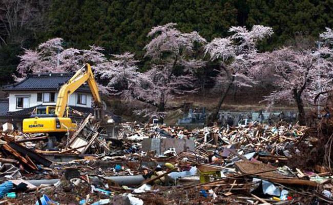 纪录片《釜石的奇迹》:一场天灾让所有人恍然大悟