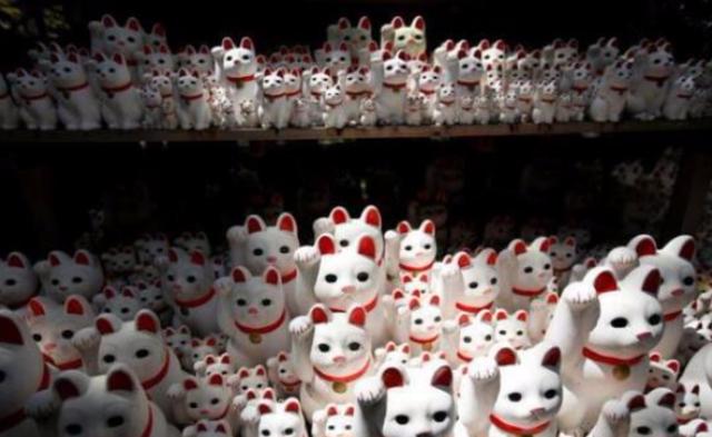 """一座被招财猫""""占领""""的寺庙丨组图"""