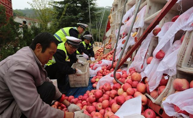 十吨苹果散落高速 40多人合力捡拾|组图