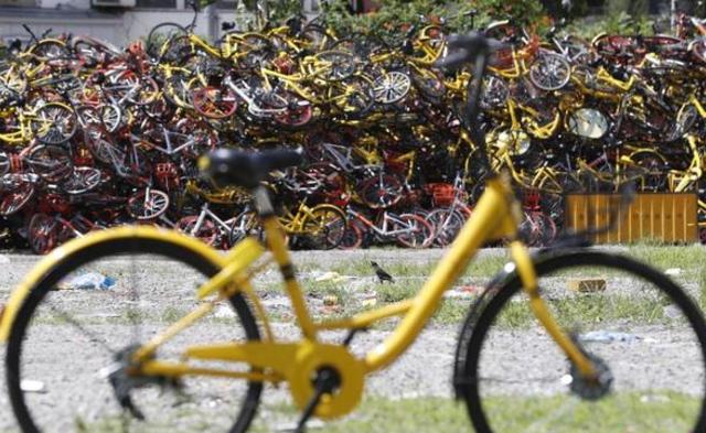 """这是上海的共享单车""""坟墓""""丨组图"""