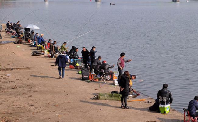 渔政江中投鱼苗 上百人闻讯来钓