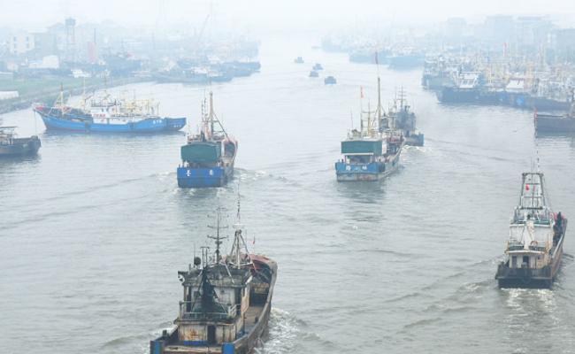 休渔期将至 大批渔船回港