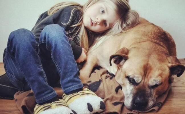 从出生一直陪伴 女孩泪目和爱犬道别