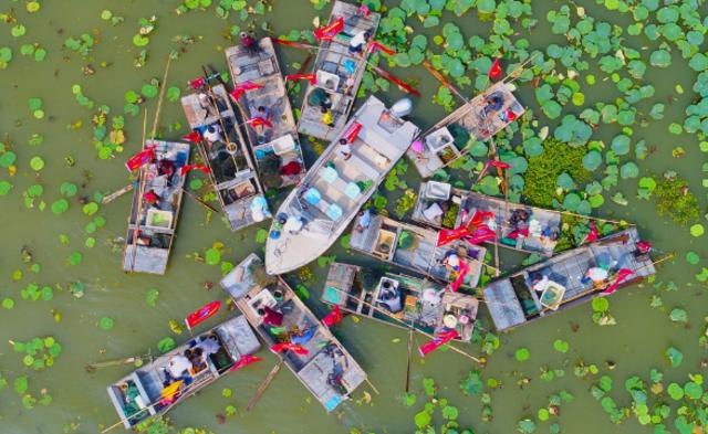 洪泽湖大闸蟹开捕丨现场图