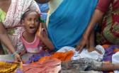 印度4岁男孩被17野狗咬致身亡|组图