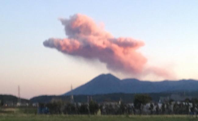 """日本火山喷出了一只""""粉色猫咪"""""""