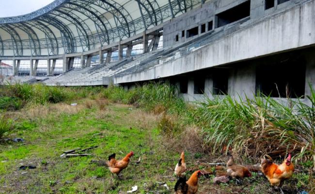 湖南体育馆项目烂尾多年 如今场内养鸡