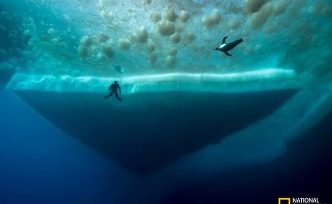 南极深海幻境