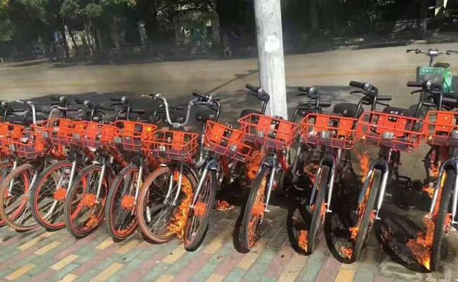上海共享单车遭恶意纵火
