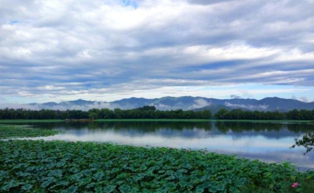 被大雨洗过的北京,有点秋天的样儿了|组图