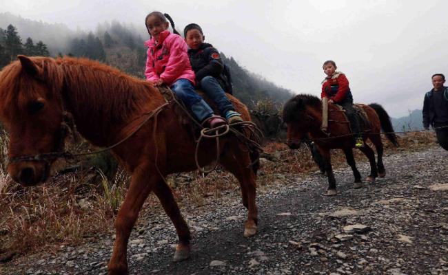 骑马上学3年后 广西深山孩子改成拼车