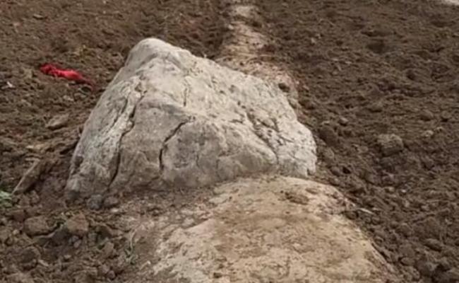 中国最小的山:高度不足1米,挖不到底