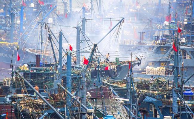 福建泉州湾开渔日