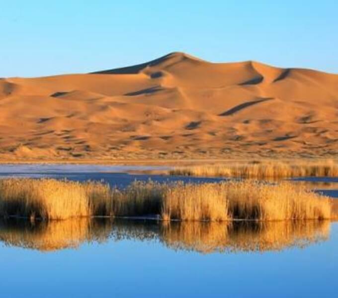 过去10年,阿拉善SEE如何助力中国环保事业?