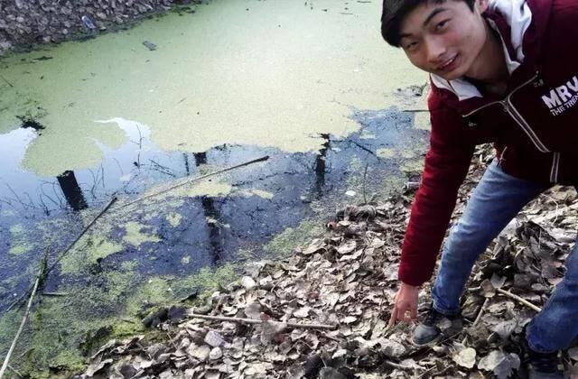 16岁中学生请病假回家 路遇溺水勇跳池塘救人