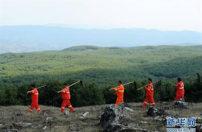 贵州三代护林员守护一片