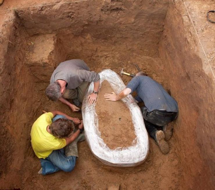 探宝迷坚持30年终获回报 发现大量公元前古银币 - 子泳 - 子泳WZ的博客