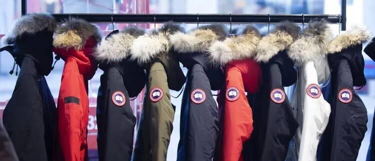 加拿大鹅股价遇寒冬,波司登却火了