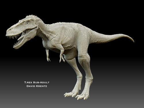 恐龙灭绝再到人类出现之前,地球发生了什么?