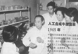 中国第一个诺贝尔奖_揭秘1965年中国人工合成胰岛素险获诺贝尔奖真相_凤凰网热文_凤凰网