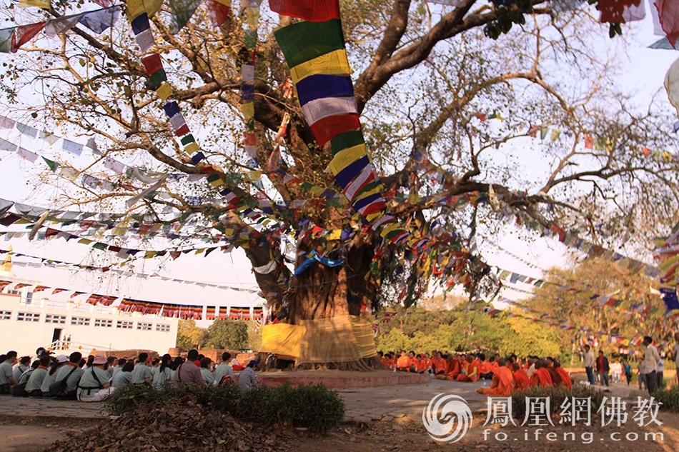 """丝路佛光:实拍""""一带一路""""上的佛教遗迹"""