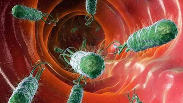 """胃病的""""克星""""找到了,经常吃一点,杀死幽门螺杆菌,远离肠胃炎"""