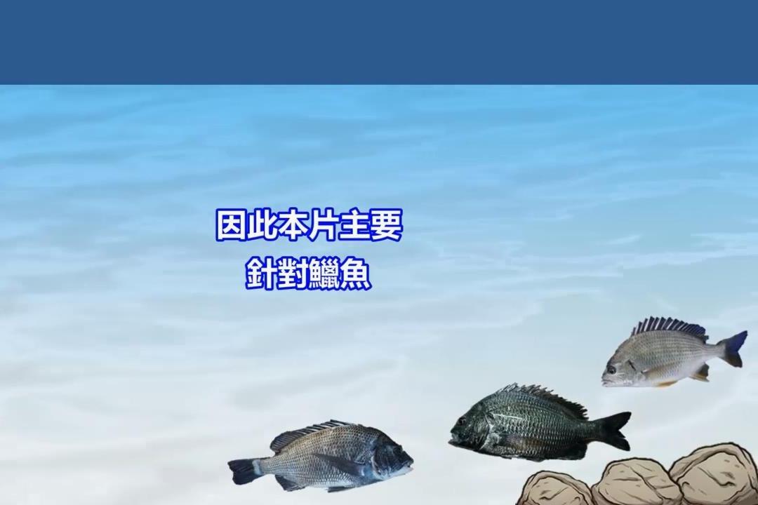 钓鱼人分享的矶钓入门技巧:运用诱饵制造标点!