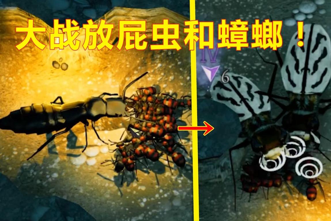 蚂蚁模拟器04:熊不理猪建立地下蚁国,要生存下去就必须打败强敌