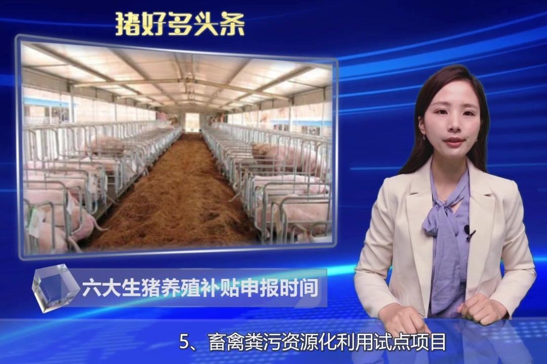 养猪补贴申请流程(四):各类生猪养殖补贴申报时间!
