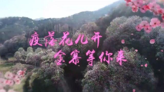 """热心网友真给力!翻唱""""神曲""""嗨起来!"""