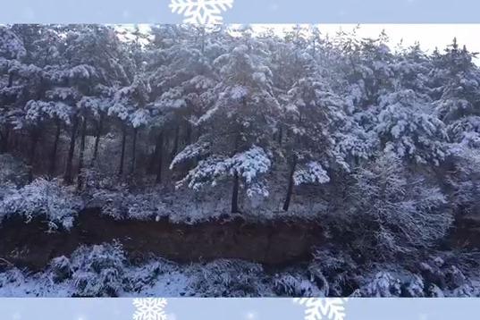 遇见初春的薛公岭雪景