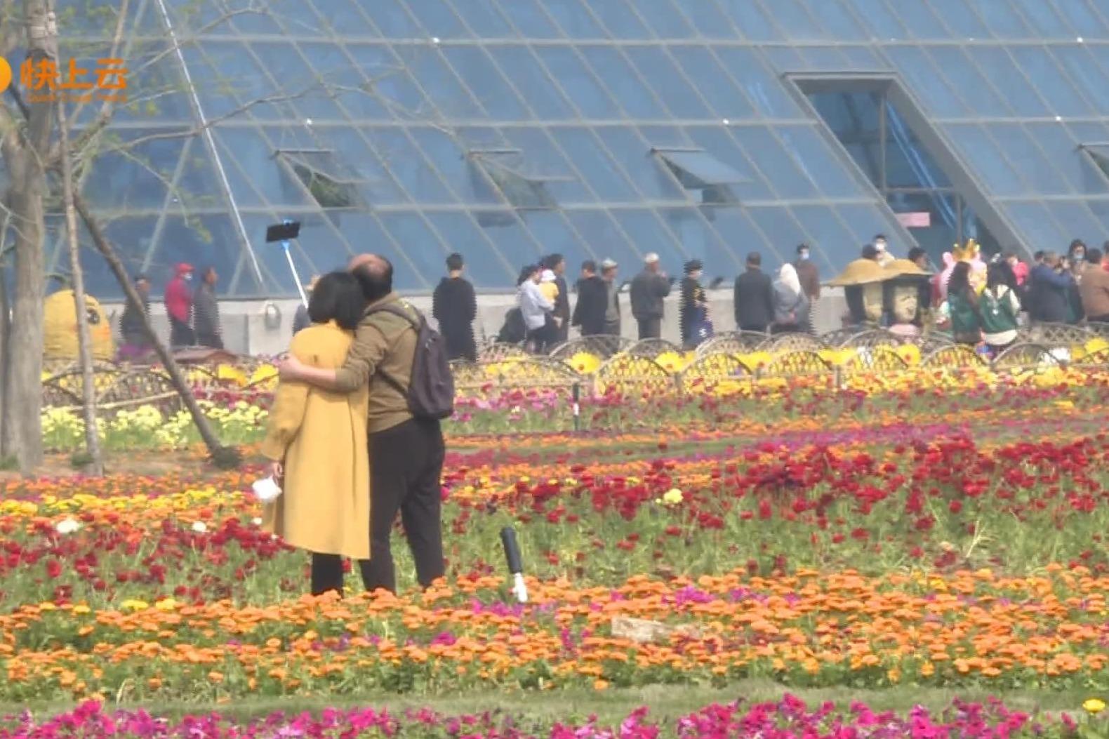 潍坊:旅游市场复苏回暖 游客乐享春光