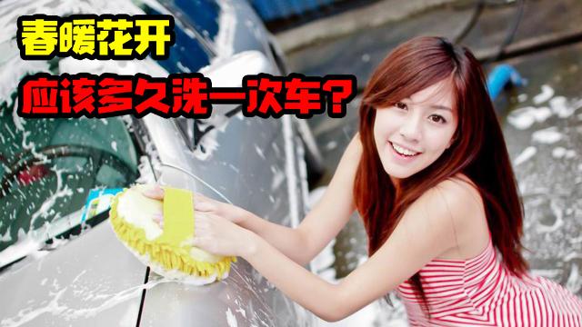 春暖花开,自驾游归来,懒人应该多久洗一次车?