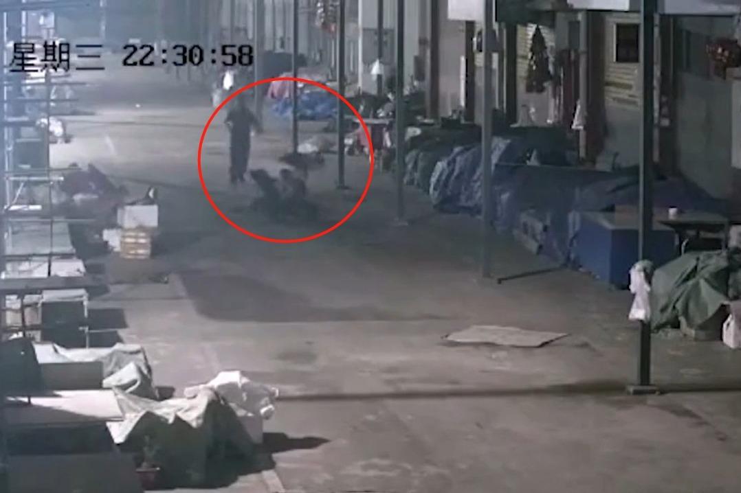 """现实版""""警匪追逃大戏""""!警民合力抓捕在逃人员"""