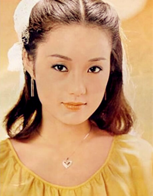 她曾是一线女星,当红时被强行摘除子宫,如今62岁仍单身不婚