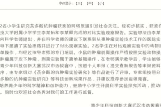 武汉科协回应小学生获奖:系独立完成专家组认可作品。你怎么看?