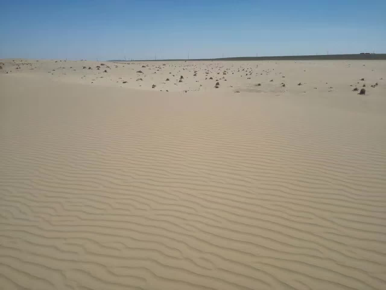 内蒙古呼伦贝尔一家两代人21年治沙3万多亩 只为沙丘变绿洲