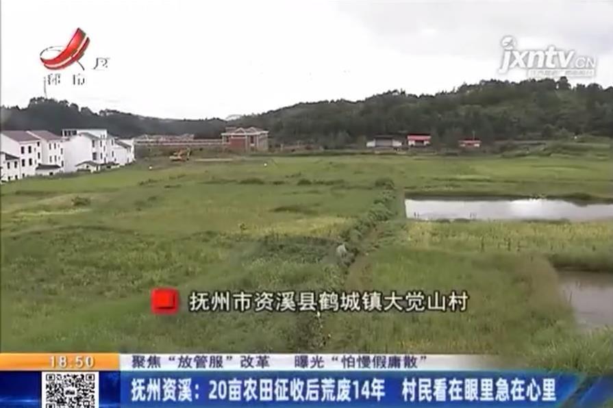 资溪鹤城镇20亩农田征收后荒废14年 村民无田可种