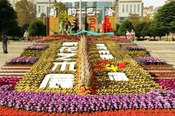 视频丨重庆市第二十四届菊花艺术展10月28日开幕